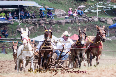 IMG_9769__Sunday_Races__