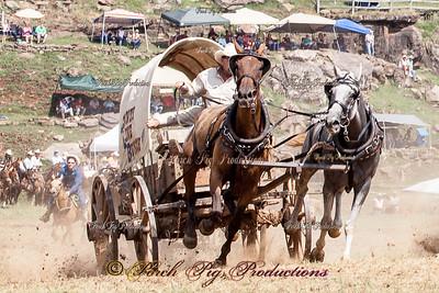 FB_banner_MG_1080__Sunday_Races__
