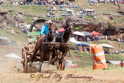 FB_banner_MG_1079_1__Sunday_Races__