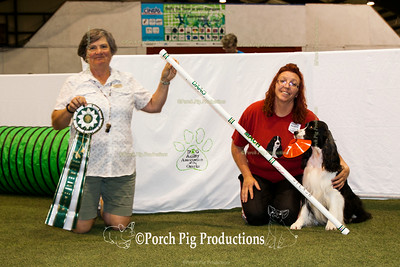 Dog Agility Association of the Ozarks