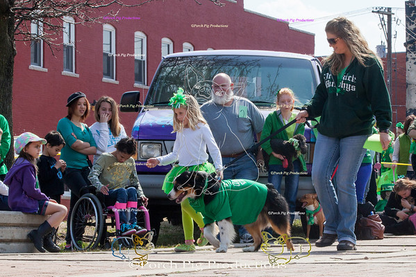 ©PorchPigProductions All Rights Reserved _MG_8276.jpg JPEG Brag Tag and Share To Purchase this image please follow the link.   Gallery may be slow to load depending on internet connection.  To  St Patricks Day Parade Galleries