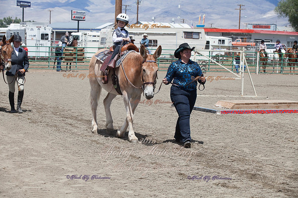 Order # IMG_1696___Youth Western__©porch Pig Productions LLC