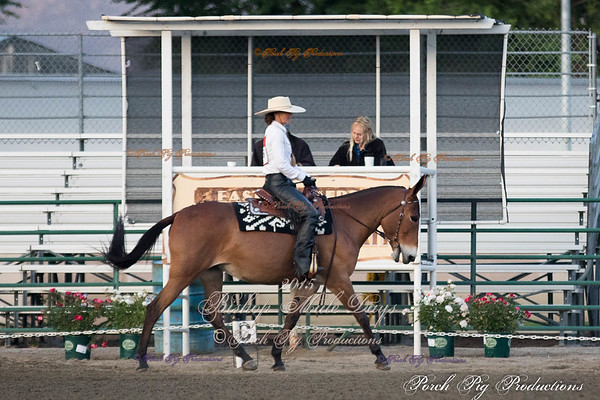 Order # PIG_4939___Western Dressage__©porch Pig Productions LLC