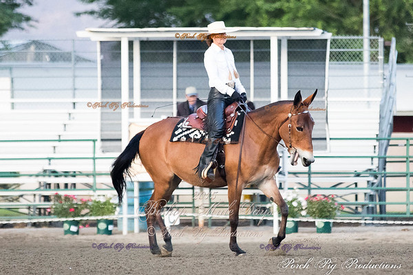 Order # PIG_4936___Western Dressage__©porch Pig Productions LLC