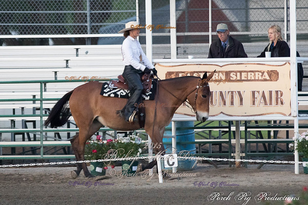 Order # PIG_4931___Western Dressage__©porch Pig Productions LLC