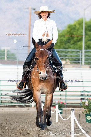Order # PIG_4938___Western Dressage__©porch Pig Productions LLC
