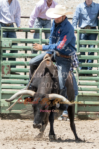 Jake Clark Mule Days 2015 Rodeo Order#_PIG_4855 www.porchpigproductions.org