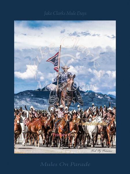 Jake Clark Mule Days 2015 Rodeo