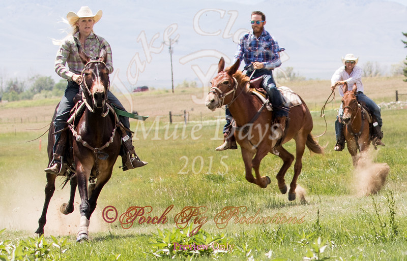 Jake Clark Mule Days 2015 Rodeo Order#_PIG_5420 www.porchpigproductions.org