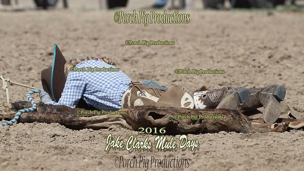 Order # DS7I0678___100EOS1D__© Porch Pig Productions