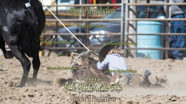 Order # DS7I0679___100EOS1D__© Porch Pig Productions
