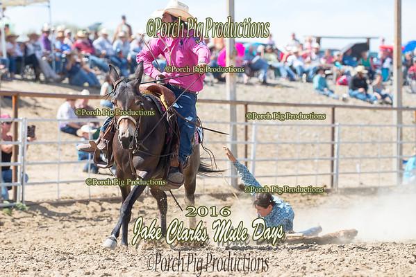Order # DS7I0668___100EOS1D__© Porch Pig Productions