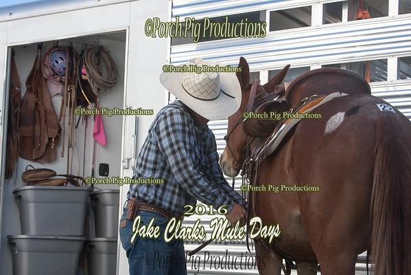 Order # IMG_8367___Snapshots__© Porch Pig Productions