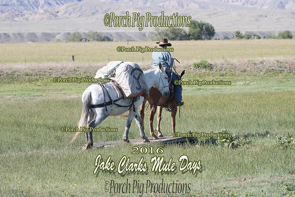 Order # DS7I2134___2016 Jake Clarks Trail Class__©porch Pig Productions LLC