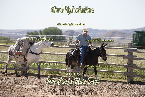 Order # DS7I2592___2016 Jake Clarks Trail Class__©porch Pig Productions LLC