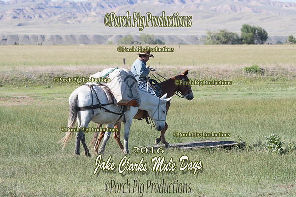 Order # DS7I2132___2016 Jake Clarks Trail Class__©porch Pig Productions LLC