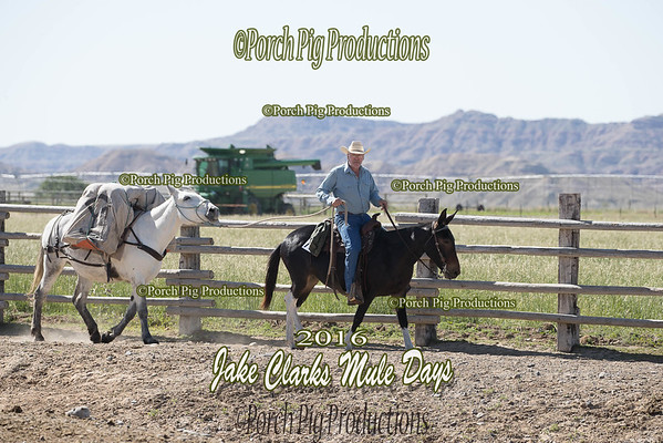 Order # DS7I2593___2016 Jake Clarks Trail Class__©porch Pig Productions LLC
