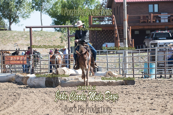 Order # DS7I2445___2016 Jake Clarks Trail Class__©porch Pig Productions LLC