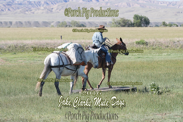Order # DS7I2133___2016 Jake Clarks Trail Class__©porch Pig Productions LLC