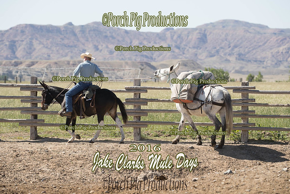 Order # DS7I2590___2016 Jake Clarks Trail Class__©porch Pig Productions LLC