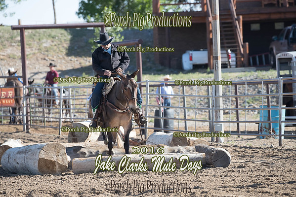 Order # DS7I2094___2016 Jake Clarks Trail Class__©porch Pig Productions LLC