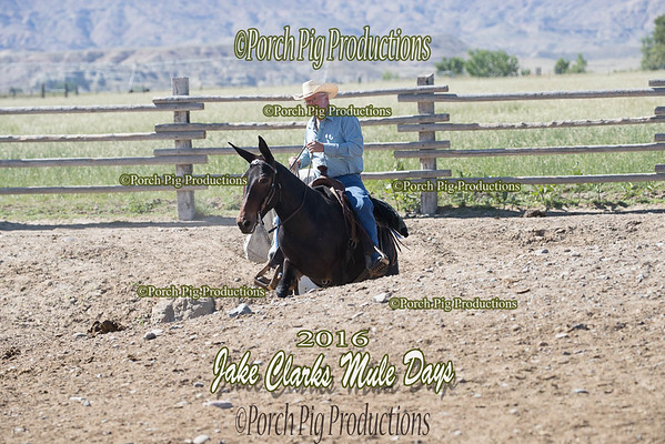 Order # DS7I2594___2016 Jake Clarks Trail Class__©porch Pig Productions LLC