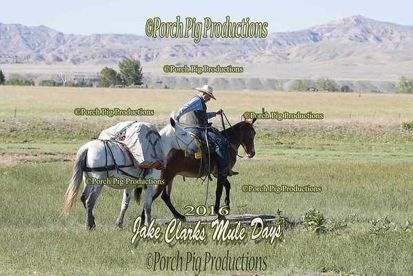 Order # DS7I2212___2016 Jake Clarks Trail Class__©porch Pig Productions LLC