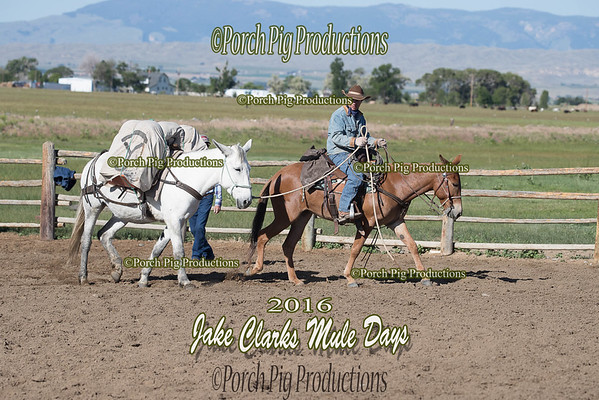 Order # DS7I2131___2016 Jake Clarks Trail Class__©porch Pig Productions LLC