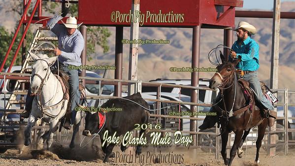 Order # DS7I1796___SETH__© Porch Pig Productions