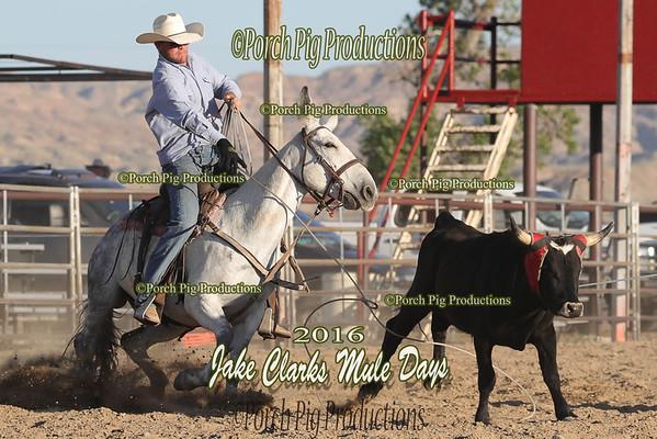 Order # DS7I1798___SETH__© Porch Pig Productions