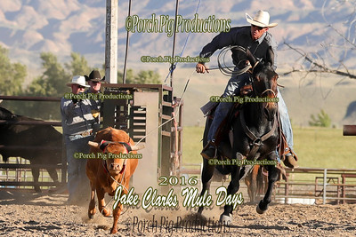 Order # DS7I1608___Jake Clark Roping__©porch Pig Productions LLC