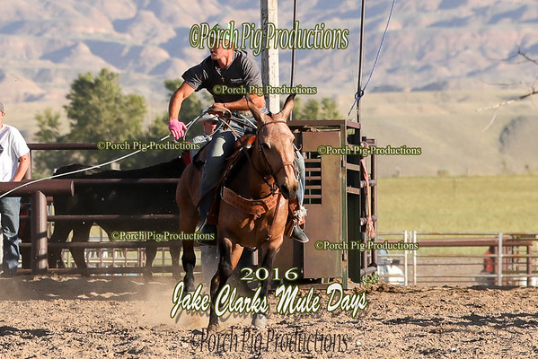 Order # DS7I1614___Jake Clark Roping__©porch Pig Productions LLC