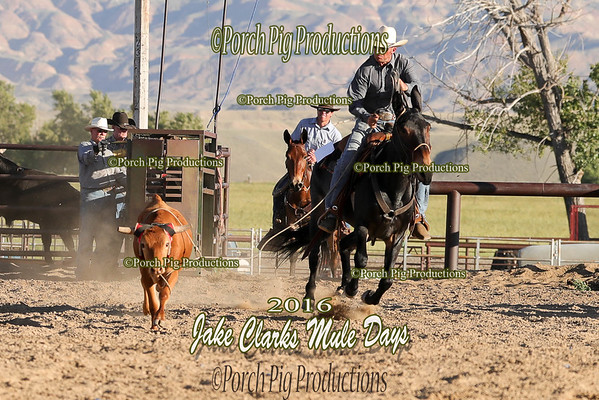 Order # DS7I1609___Jake Clark Roping__©porch Pig Productions LLC