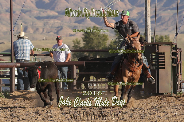 Order # DS7I1613___Jake Clark Roping__©porch Pig Productions LLC
