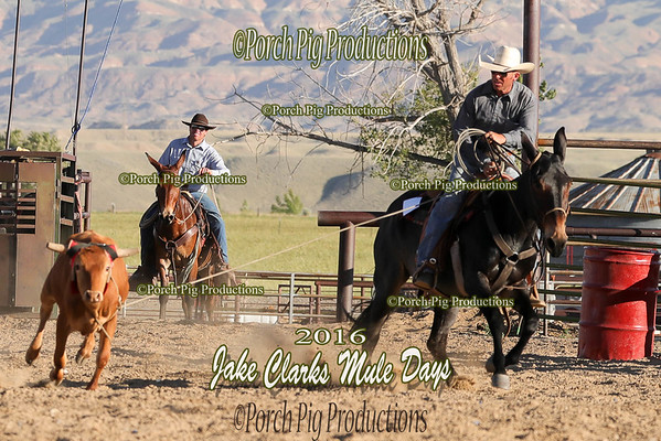 Order # DS7I1610___Jake Clark Roping__©porch Pig Productions LLC