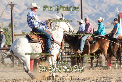 Order # DS7I1602___Jake Clark Roping__©porch Pig Productions LLC