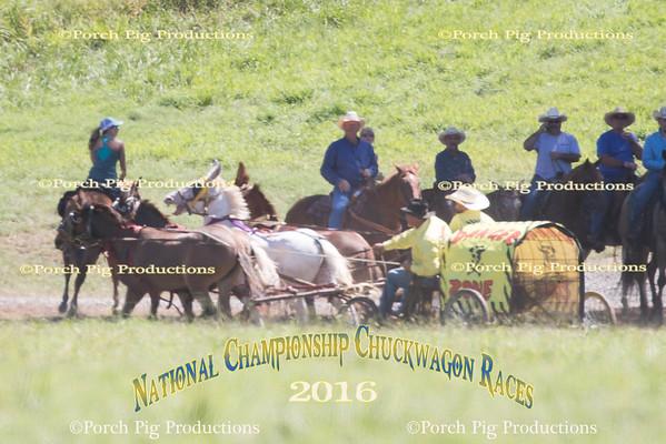 Friday 4 up Mules 2016  National Championship Chuckwagon Races
