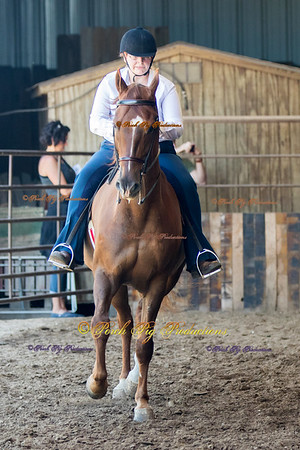 DS7I0539 To Order Images please follow link:  http://www.porchpigproductions.org/PPSales-Galleries/2016-Sales-Galleries/4-States-Horse-Show/4-States-Saddle-Club