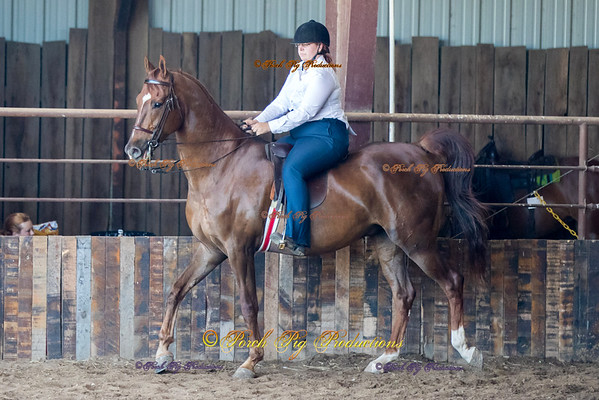 DS7I0530    4-States-Saddle-Club To Order Images please follow link:  http://www.porchpigproductions.org/PPSales-Galleries/2016-Sales-Galleries/4-States-Horse-Show/4-States-Saddle-Club