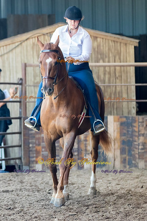 DS7I0538 To Order Images please follow link:  http://www.porchpigproductions.org/PPSales-Galleries/2016-Sales-Galleries/4-States-Horse-Show/4-States-Saddle-Club