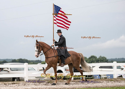 Order # DS7I1984___Giated horse show 2016__© Porch Pig Productions