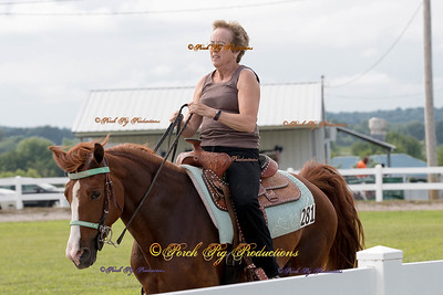 Order # DS7I1756___Giated horse show 2016__© Porch Pig Productions