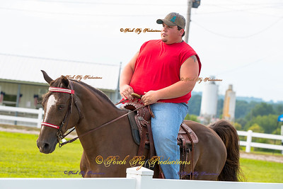 Order # DS7I1757___Giated horse show 2016__© Porch Pig Productions