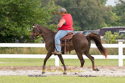 Order # DS7I1767___Giated horse show 2016__© Porch Pig Productions