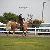 Order # DS7I2192___Giated horse show 2016__© Porch Pig Productions