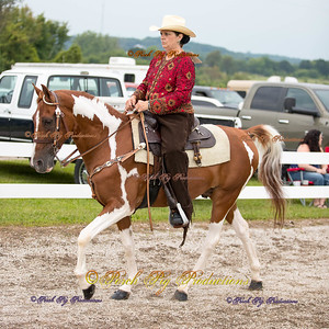 Order # DS7I2077___Giated horse show 2016__© Porch Pig Productions