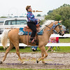 Order # DS7I2198___Giated horse show 2016__© Porch Pig Productions