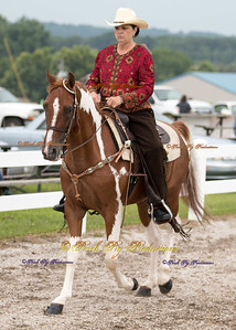 Order # DS7I2076___Giated horse show 2016__© Porch Pig Productions