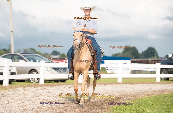 Order # DS7I1867___Giated horse show 2016__© Porch Pig Productions