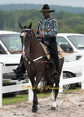 Order # DS7I2073___Giated horse show 2016__© Porch Pig Productions